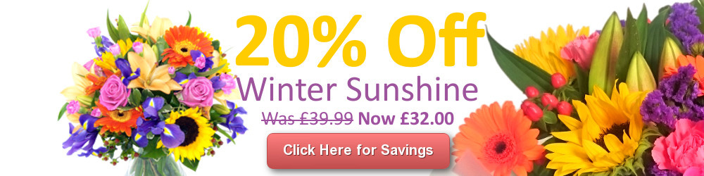 Save 20% on the Winter Sunshine Bouquet with Free Delivery!