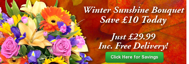 Winter Sunshine; Special offer flower delivery by Clare Florist