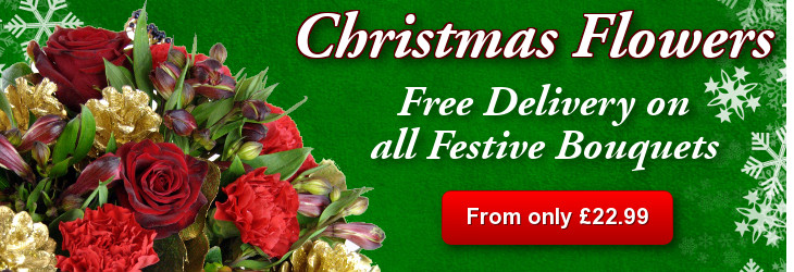 Shop our Christmas Flower Collection