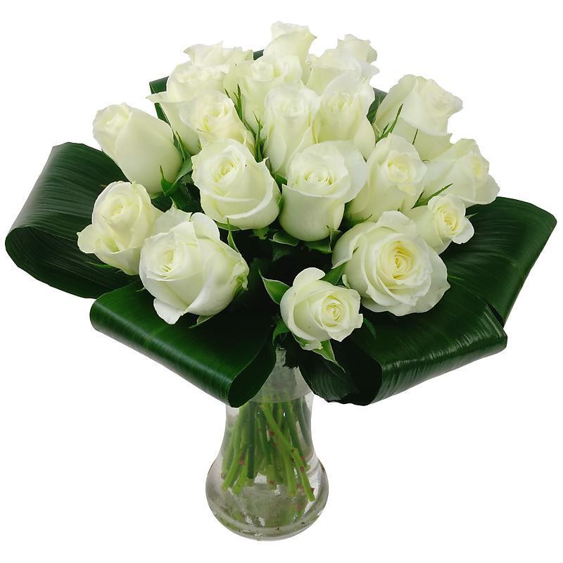 Innocence White Roses - Birthday