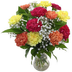 Mixed Carnations with 100% Extra Free