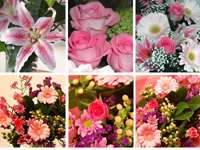 Mother's Day Flower Collection