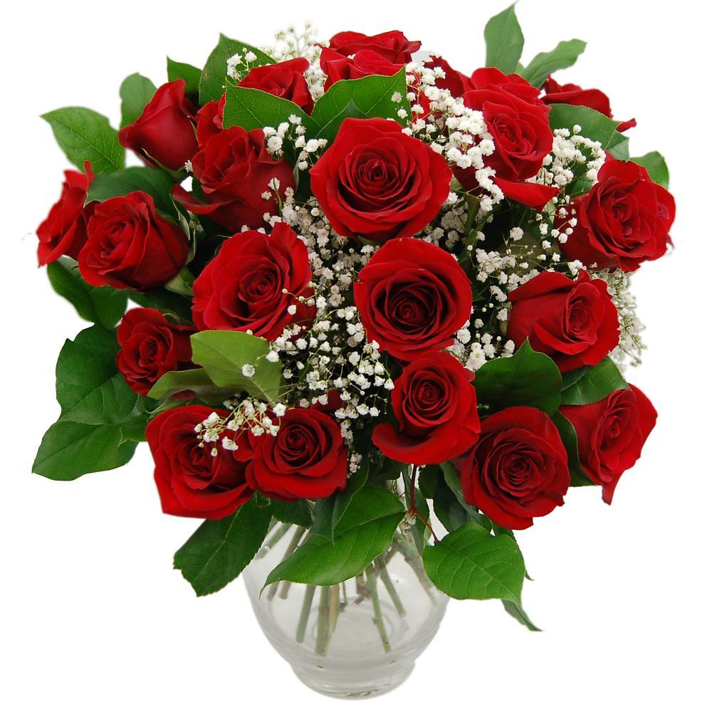 Promise 24 Red Roses Fresh Flower Bouquet Romantic Red Roses For Your Loved Ones Delivered Next Day