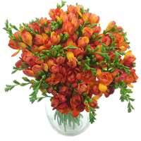Red Meadows Freesia Bouquet
