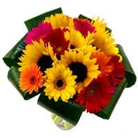 Sunflower and Germini Bouquet