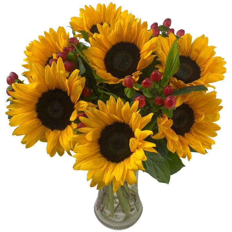 Sunflower Surprise - Birthday