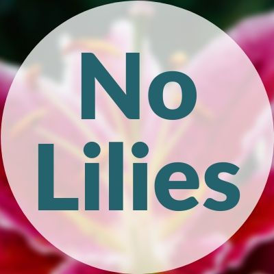 Do Not Include Lilies