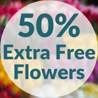 50% Extra Free Flowers Special Offer