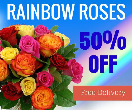 Rainbow Roses 50 Percent