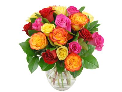 Rainbow Roses beautiful fresh cut roses for your home